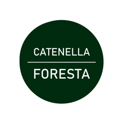 Filato Catenella - Foresta